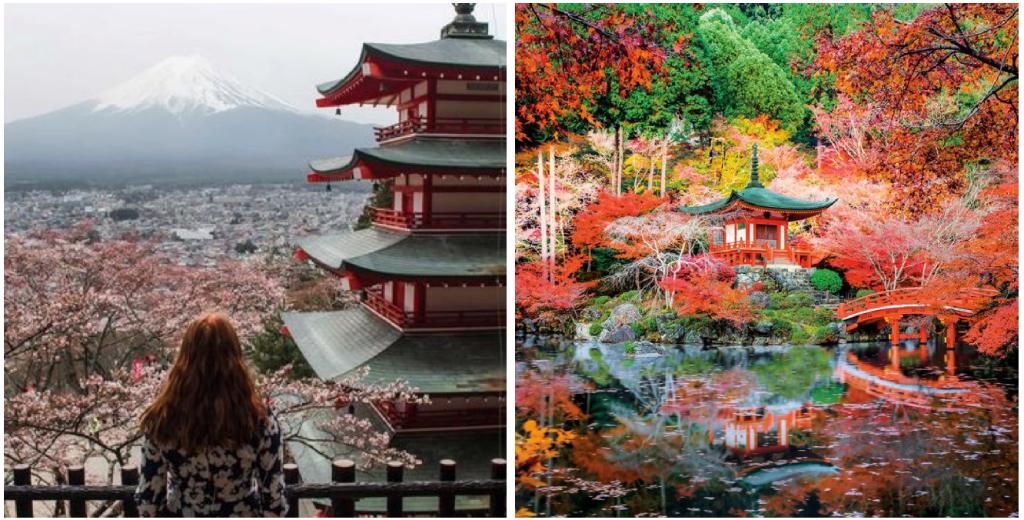 viajes a japon kioto