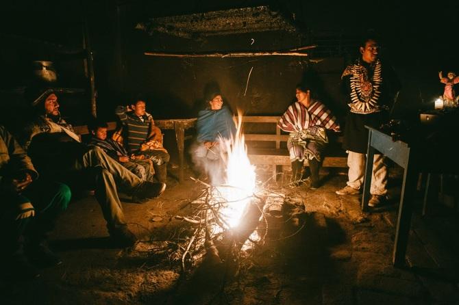 viajes con ayahuasca