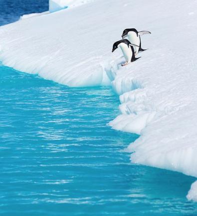 viajes que cambiaron al mundo antartica