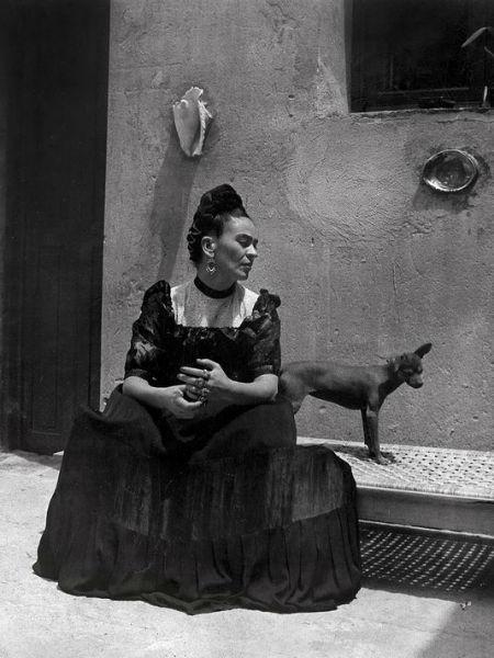 Frida Kahlo Lola Alvarez Bravo Dog-w636-h600