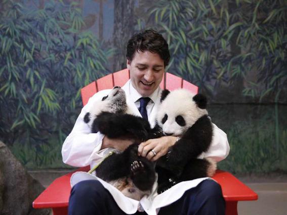 Justin Trudeau as a woman pandas-w636-h600