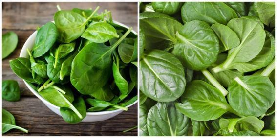 alimentos que mejoran la apariencia fisica 3