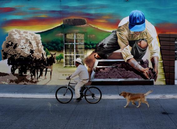 arteurbano-colectivotomate-bicicleta