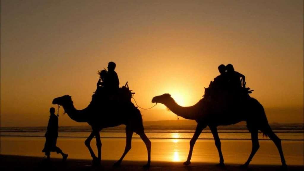 camello poemas arabes