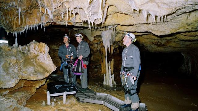 cueva documentales internacionales