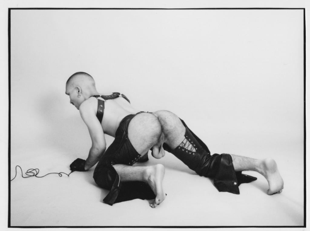 fotografias de la diversidad queer gagball