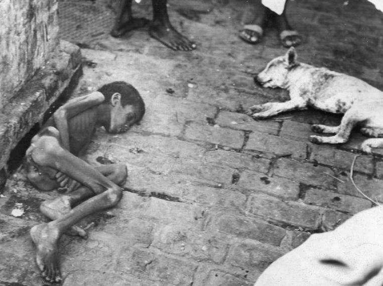 hambruna de bengala cuatro