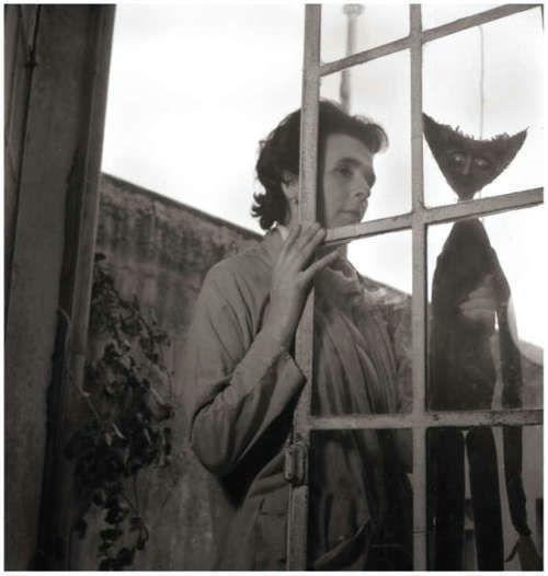 leonora carrington ventana