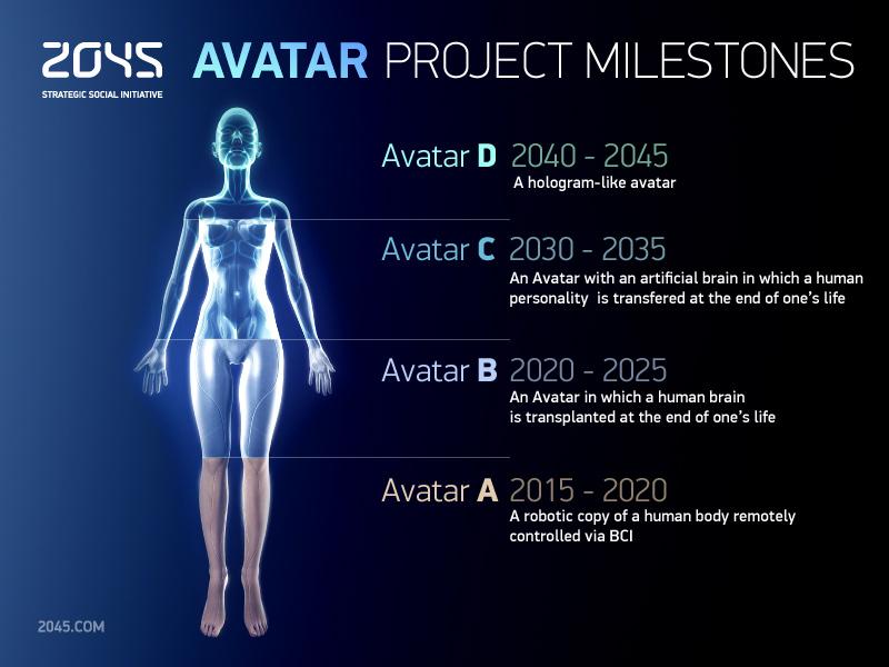 metas proyecto avatar