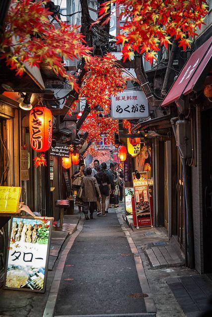 presupuesto para viajar a japon personas