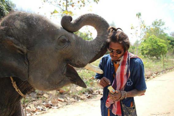 Elefantes tailandia   comida