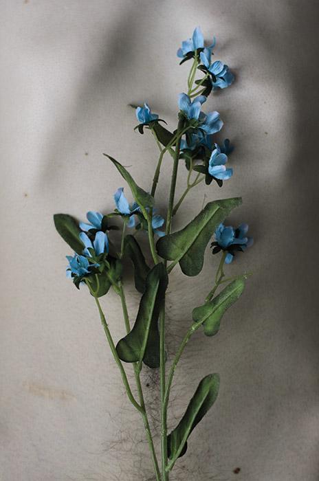 blue Esthaem