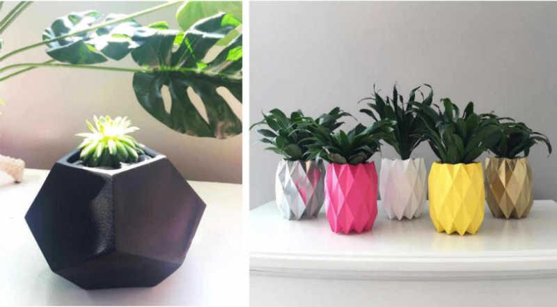 decoracion minimalista vegetal