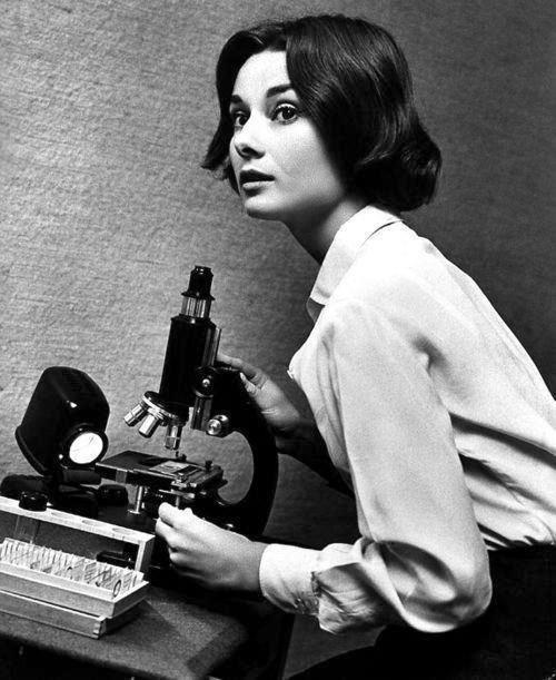 historia del microscopio audrey hepburn