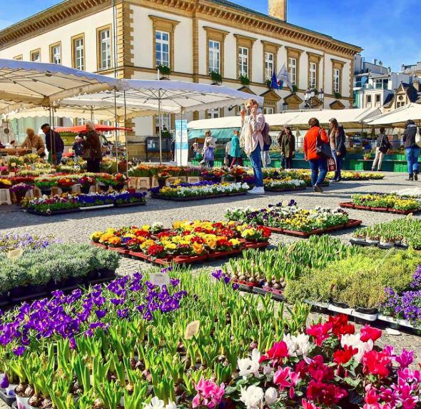 mejores ciudades para vivir en 2017 luxemburgo