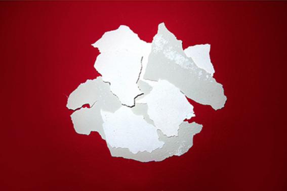 papel dolor y fragilidad