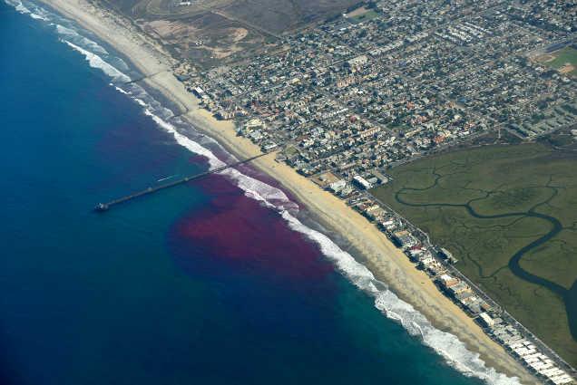 pink islands miami art installation experiment california-w636-h600