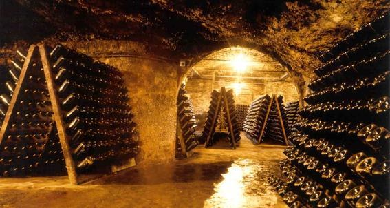 produccion de vinos en mexico