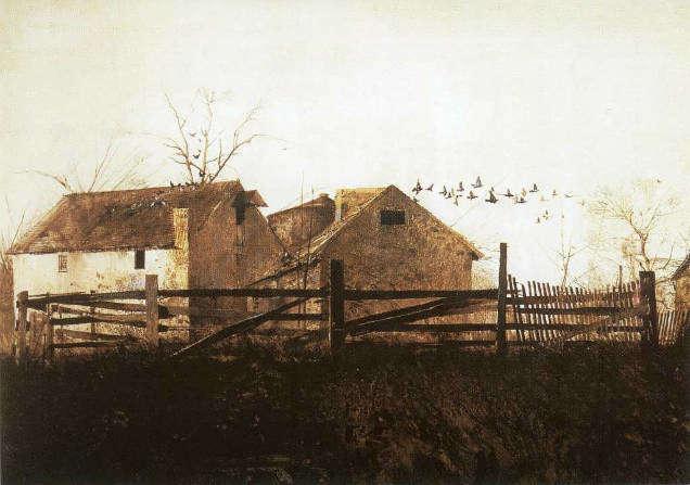 Andrew Wyeth hated artist birds-w636-h600