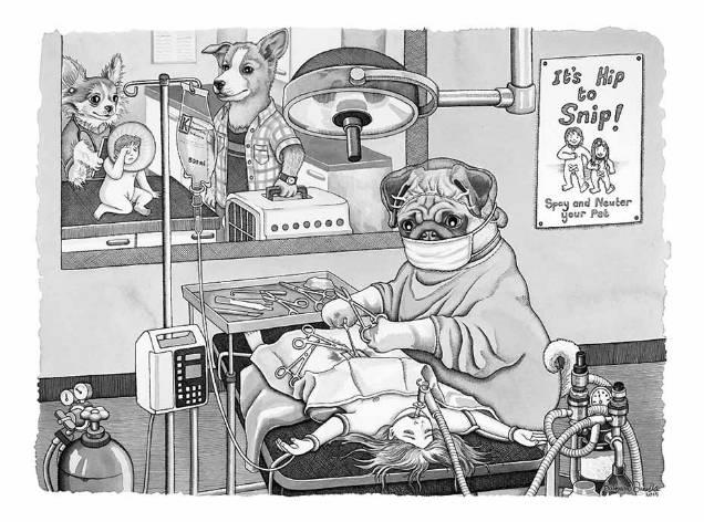Barbara Daniels dark illustrations pug doctor