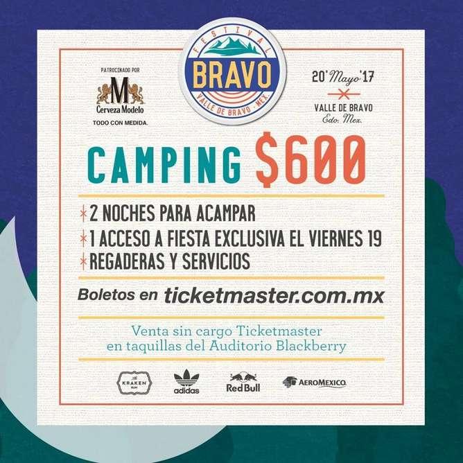 Festival Bravo camp