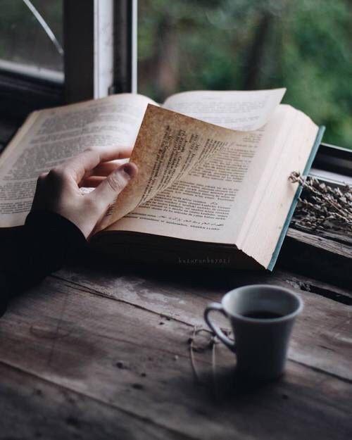 amante de los libros amar