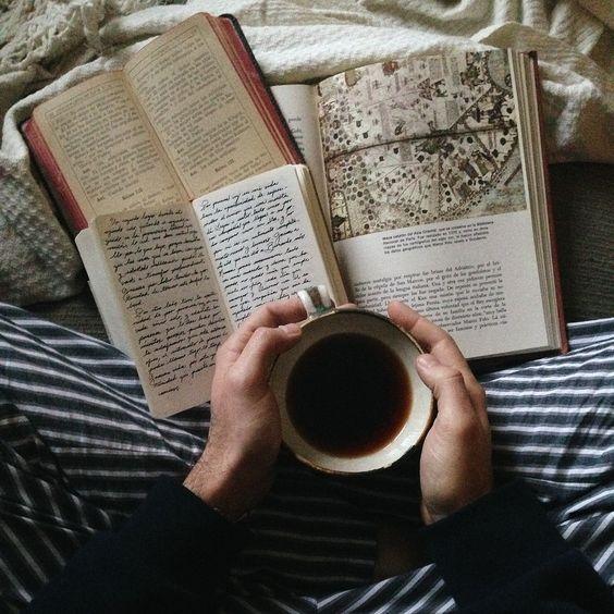 amante de los libros literatura
