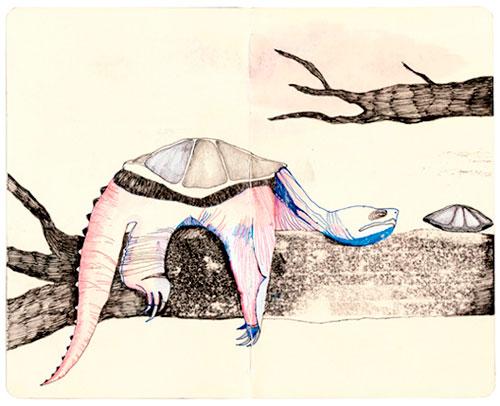 arte de Devendra Banhart tortuga
