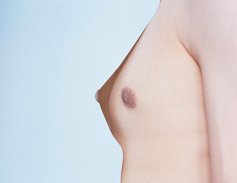 fotografias de desnudos pixy liao senos