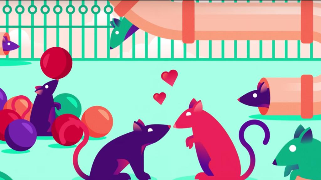 las drogas generan adiccion ratas