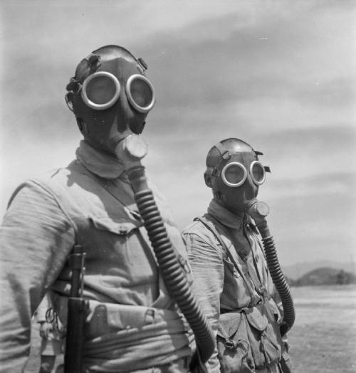 mascara de gases