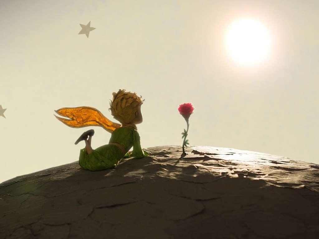 rosa diferencia entre querer y amar