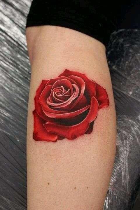 rosa tatuajes de hombre