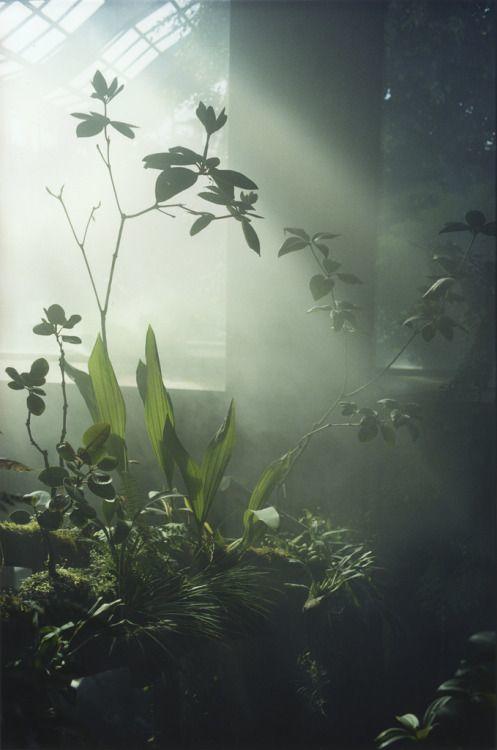 como tomar fotos con luz natural tragaluz