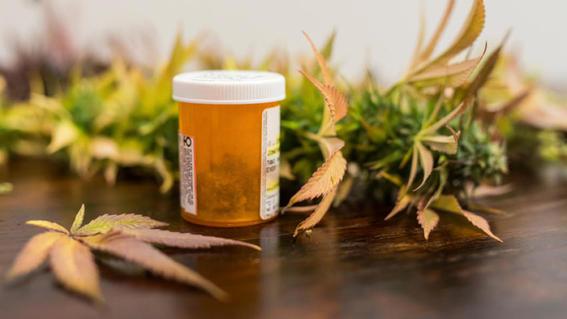 legalizacion de la marihuana medicinal en mexico