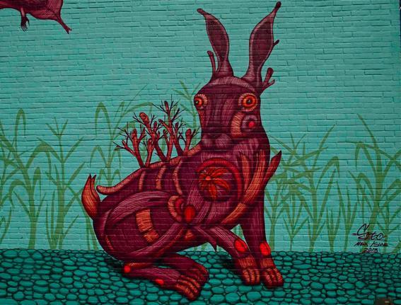 artistas urbanos mexicanos 10