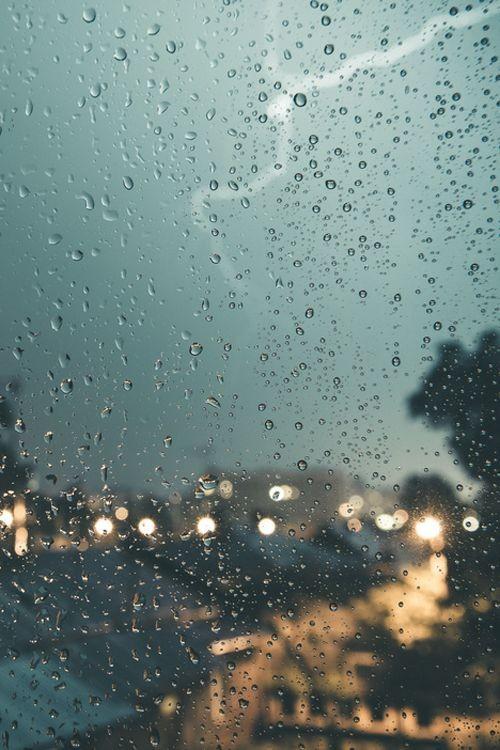 10 cuentos cortos para leer un día lluvioso 6