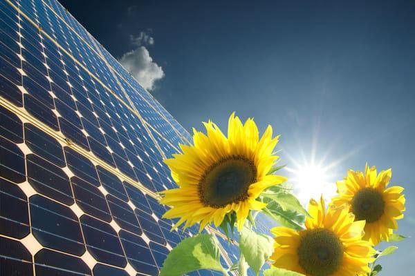 ¿Por qué si la energía solar es la mejor opción no la estamos utilizando? 1
