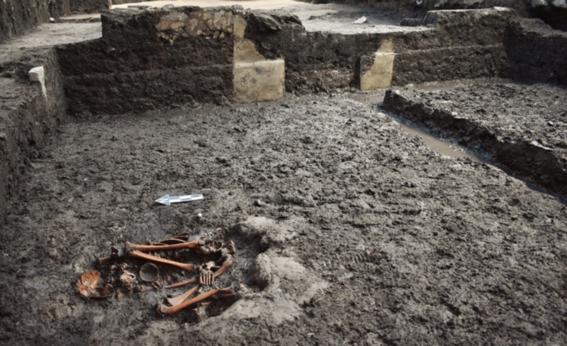 viviendas sobre descubrimiento arqueologico 2