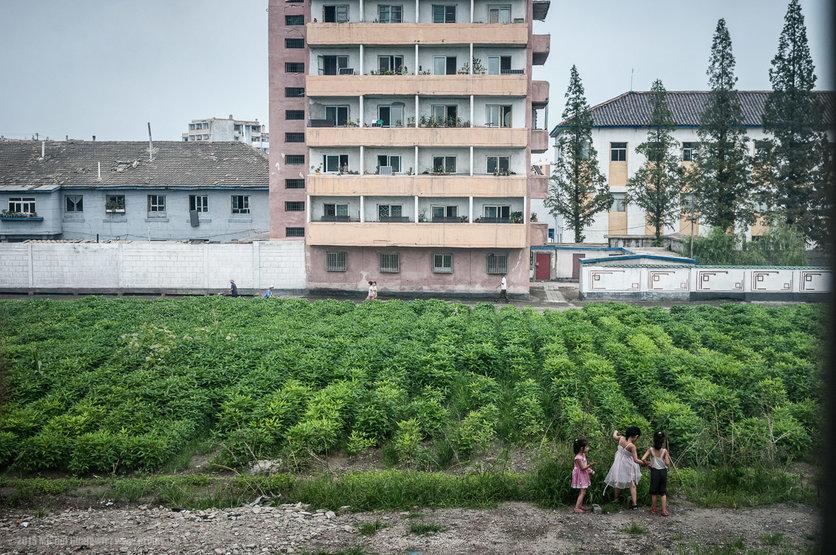La belleza de Corea del Norte en 16 fotografías 10