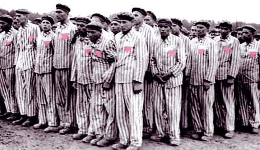 Los nazis rosas: la historia del tercer sexo creado por Hitler 3