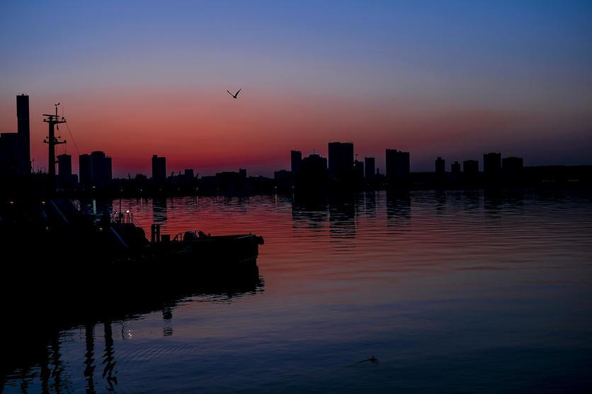 El verdadero 'Reto Tokio': cómo retratar una ciudad en 24 fotografías 20