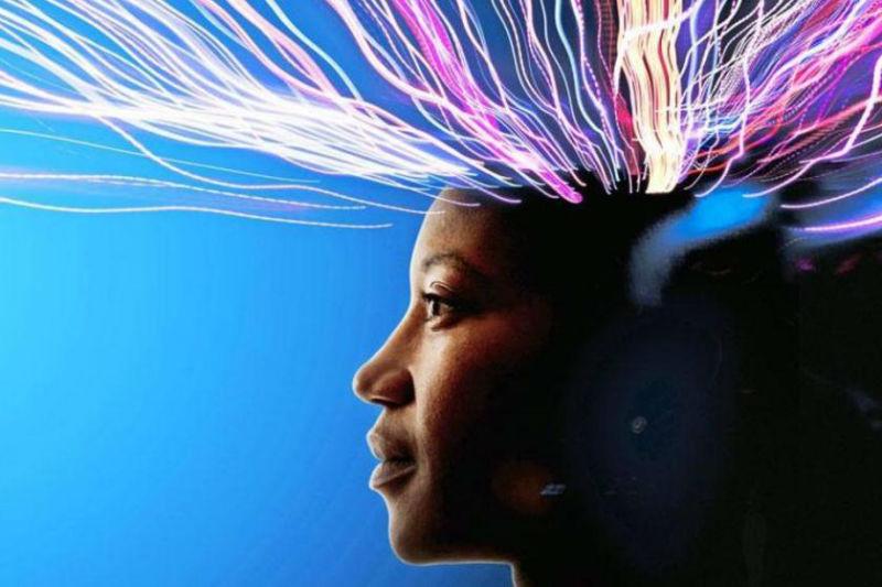 campos morficos neuronas cerebro