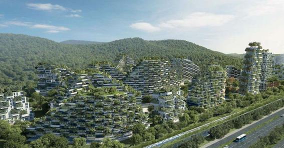 primera ciudad bosque contaminacion