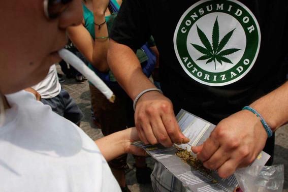 marihuana farmaceutica en uruguay