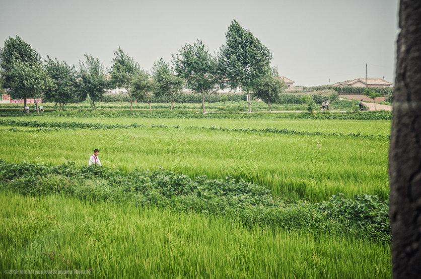 La belleza de Corea del Norte en 16 fotografías 1