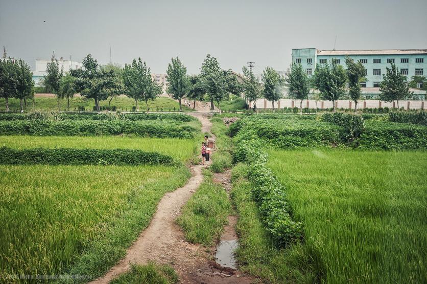 La belleza de Corea del Norte en 16 fotografías 9