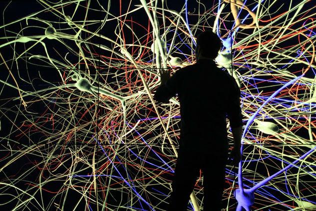 mente neuronas cerebro
