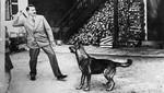 nazis defensores de los animales