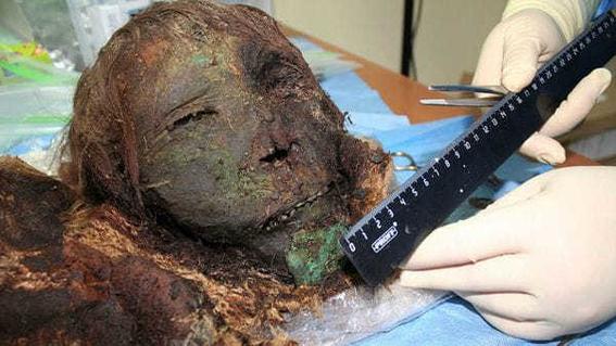 momia de princesa polar 1